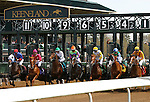 April 10, 2015: Keeneland race 4 Maiden 3 year old.   Candice Chavez/ESW/CSM