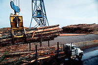 Hardwood logs being unloaded by a crane from a truck.