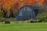 Rolled hay and old barn <br />