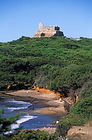 Europe/Provence-Alpes-Côte d'Azur/83/Var/Ile d'Hyères/Ile de Porquerolles: Le Fort du grand Langoustier