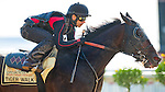 Tiger Walk, trained by Ignacio Correas, exercises on May 12, 2012 in preparation for the 137th running of the Preakness Stakes at Pimlico Race Course in Baltimore, Maryland