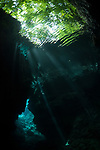 Russell Islands, Solomon Islands; green trees are visible from underwater through the surface of Mirror Pond as sun rays streak in from above