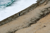 BNPS.co.uk (01202 558833)<br /> Pic: Graham Hunt/BNPS<br /> <br /> What a difference a year makes!<br /> <br /> <br /> The windswept beach at Durdle Door in Dorset is virtually deserted today, exactly a year after glorious weather saw thousands flock to the iconic landmark. <br /> <br /> A few stragglers, wrapped up in hats and coats, braved the wind and rain to walk along the beach that became a magnet for sunseekers during last year's pandemic.<br /> <br /> Whilst last year saw temperatures into the mid-20s - way above the average for May - today the thermometer struggled to reach 10C.<br /> <br /> <br /> (This picture was taken on 20/5/21)