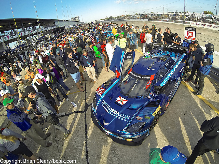 The #90 Chevrolet Corvette DP of Richard Westbrook, Michael Valiante and Mike Rockenfeller on the grid before the 12 Hours of Sebring, Sebring International Raceway, Sebring, FL, March 2014.  (Photo by Brian Cleary/www.bcpix.com)