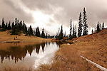 Tipsoo Lakes, easily accessible from U.S. Highway 410 through Mount Rainier National Park adorn the summit of Chinook Pass,  Early fall color from dried Beargrass, Blueberries, and Mountain Ash brighten stormy fall skies.  Mt. Rainier concealed by clouds.