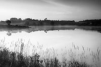 Dawn light over Ryat Linn Reservoir, Dams to Darnley Country Park, Barrhead, East Renfrewshire