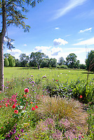 Cottage garden with arbor trellis, chair, mixture of rambling flowers and plants and ornamental grass, sheep farm animals in meadow grass beyond, blue sky and clouds on sunny day