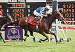 8 August 2009: DYNAFORCE with jockey Kent Desormeaux winning the 20th running of the G1 Beverly D. at Arlington Park in Arlington Heights, Illinois.