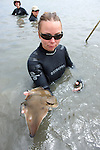 Katie Kent With Bat Ray