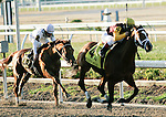 Feb 2010: Discreetly Mine and Javier Castellano win the Risen Star Stakes at the Fairgrounds in New Orleans, La.