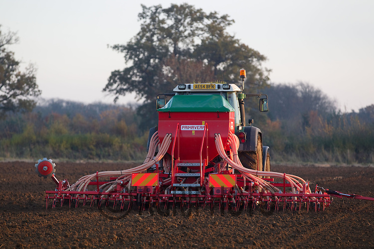 Fendt 818 drilling Wheat in Lincolnshire.Picture Tim Scrivener date taken 20th November 2012.mobile 07850 303986 e-mail tim@agriphoto.com.....covering agriculture in the Uk....
