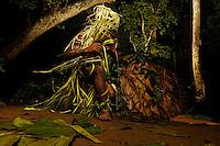 """In the evening at the camp, the people talk to the children about the ancestors and their ways of the past. They speak of hunting elephants with assegais. The ancestors, the great elephant hunters, are called """"Touma"""" and when a  entered the forest, the people had hopes for an exceptional hunt. During the nocturnal ceremonies, the whole camp calls upon the largesse of the god """"Comba"""". The chants are hunting songs, of enthusiasm and thanks for the hunt or harvest to come. These ceremonies often take place after a good hunt, when the camp shares antelope or boar meat.<br /> Au campement, le soir, les personnes parlent aux enfants des ancêtres et de leur conduite d'autrefois. Ils racontent les grandes chasses à l'éléphant à la sagaie. Les ancêtres, les grands chasseurs d'éléphants s'appellent  «Touma» et quand un «Touma» rentrait en forêt, le peuple avait l'espoir de chasse exceptionnelle. Pendant les cérémonies nocturnes, tout le campement appelle les largesses du dieu«Comba». Les chants sont des chants de chasse, d'allégresse et de remerciement pour les chasses ou cueillettes à venir. Ces cérémonies ont lieu souvent après une bonne chasse quand le campement se partage viandes d'antilope, de sanglier."""