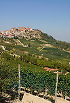 Italien, Piemont, Langhe: Weinberge und Weinort La Morra | Italy, Piedmont, Langhe: vineyards and La Morra