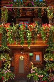 Oesterreich, Salzburger Land, Pinzgau, Dienten: altes Bauernhaus im Dorfzentrum mit ueppigem Blumenschmuck   Austria, Salzburger Land, Pinzgau, Pinzgau, Dienten: flower decorated farmhouse at village centre