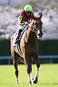 Horse Racing: Osaka Hai