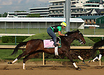LOUISVILLE, KY - APRIL 25: Carina Mia (Malibu Moon x Miss Simpatia, by Southern Halo) works 5 furlongs in 58.8 with workmate Black Eagle (ahead of her, not shown in this picture) at Churchill Downs while training for the Kentucky Oaks. Owner Three Chimneys Farm LLC, trainer William I. Mott. (Photo by Mary M. Meek/Eclipse Sportswire/Getty Images)