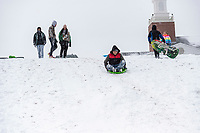Diego Aldaco in red should jacket sleds with friends Monday February 15, 2021, on a hill behind the First Presbyterian Early Learning Center in Rogers.  NWA Democrat-Gazette/Spencer Tirey)