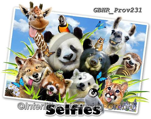 Howard, REALISTIC ANIMALS, REALISTISCHE TIERE, ANIMALES REALISTICOS, selfies, paintings+++++Llama Selfie,GBHRPROV231,#a#, EVERYDAY ,panda