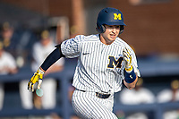 Michigan Wolverines catcher Casey Buckley (24) runs to first base during the NCAA baseball game against the Eastern Michigan Eagles on May 8, 2019 at Ray Fisher Stadium in Ann Arbor, Michigan. Michigan defeated Eastern Michigan 10-1. (Andrew Woolley/Four Seam Images)