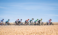 Green Jersey Peter Sagan (SVK/Bora-Hansgrohe) rolling in the bunch<br /> <br /> Stage 4: Reims to Nancy(215km)<br /> 106th Tour de France 2019 (2.UWT)<br /> <br /> ©kramon
