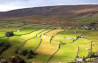 View near Askrigg, North Yorkshire. Stne walls. Fields..