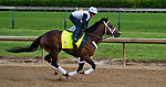 LOUISVILLE, KY - MAY 03: Firenze Fire, trained by Jason Servis, exercises in preparation for the Kentucky Derby at Churchill Downs on May 3, 2018 in Louisville, Kentucky. (Photo by Scott Serio/Eclipse Sportswire/Getty Images)