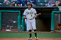 Jose Rojas (8) of the Salt Lake Bees at bat against the Oklahoma City Dodgers at Smith's Ballpark on July 31, 2019 in Salt Lake City, Utah. The Dodgers defeated the Bees 5-3. (Stephen Smith/Four Seam Images)