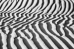 Black and white abstract photograph of sand ripples at Death Valley's Mesquite Dunes