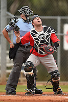 Illinois State Redbirds Blake Molitor (42) and umpire Mike Savakinas keep their eye on a popup during a game against the Georgetown Hoyas on March 7, 2015 at North Charlotte Regional Park in Port Charlotte, Florida.  Illinois State defeated Georgetown 2-1.  (Mike Janes/Four Seam Images)