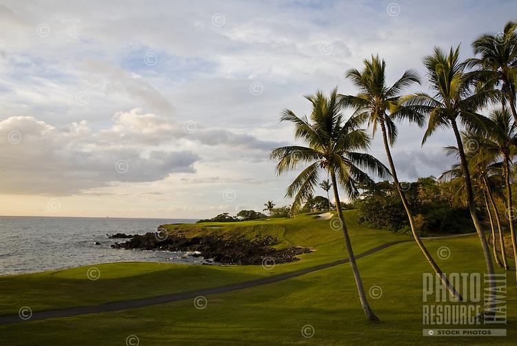 Palm tree lined Mauna Kea Golf Course on the coast of the Big Island of Hawaii