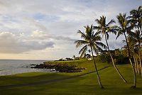 Palm tree lined Mauna Kea Golf Course on the coast of the Big Island of Hawaii