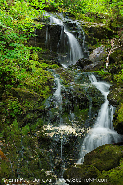 Canyon Fall on Spur Brook in Low and Burbank's Grant, New Hampshire during the summer months. This waterfall is within the White Mountain National Forest.
