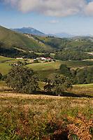 Europe/France/Aquitaine/64/Pyrénées-Atlantiques/Pays-Basque/Env de Saint-Martin-d'Arberoue: vue sur les pyrénées basques