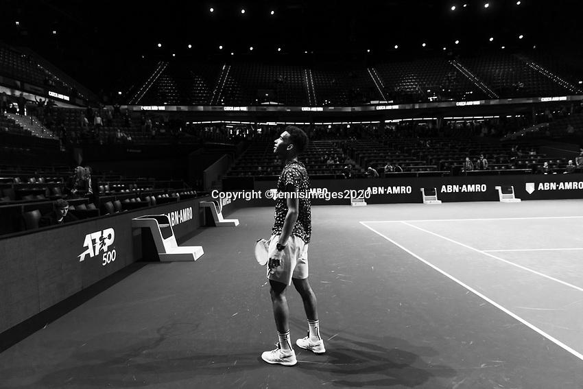 Rotterdam, The Netherlands, 14 Februari 2020, ABNAMRO World Tennis Tournament, Ahoy,   Felix Auger-Aliassime (CAN) celebrates his win.<br /> Photo: www.tennisimages.com