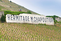Sign saying Hermitage M Chapotier   The Hermitage vineyards on the hill behind the city Tain-l'Hermitage, on the steep sloping hill, stone terraced. Sometimes spelled Ermitage.  Domaine M Chapoutier, Tain l'Hermitage, Drome Drôme, France Europe