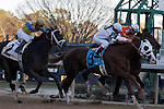 """The #9 """"Will Take Charge"""" and #4 """"Texas Bling"""" battling it out as they approach the finish line during the Smarty Jones stakes with #2 """"Always in a Tiz"""" not to far behind. Jan.21, 2013 - Hot Springs, Arkansas, U.S -   (Credit Image: © Justin Manning/Eclipse/ZUMAPRESS.com)"""