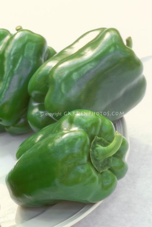 Green Bell Peppers California Wonder, sweet pepper