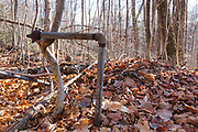 Remnants of a dwelling (logging camp) along the abandoned Woodstock & Thornton Gore Railroad in Livermore, New Hampshire. This was a logging railroad in operation from 1909-1914 (+/-). The removal of historic artifacts from federal lands without a permit is a violation of federal law.