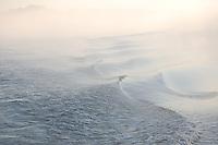 Waves and fog on the intercoastal waterway near Appalatchicola Florida