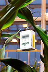 September 9, 2014. Research Triangle Park, North Carolina.<br />  Omni sensors that monitor temperature, humidity, and light and carbon dioxide levels hang from the ceilings in each grow room.<br /> The Syngenta Advanced Crop Lab is nearly one acre of advanced agricultural research under glass. The lab is capable of maintaining many different environments under its roof, allowing scientists to test the effects of various environmental elements on different crops and plants side by side.