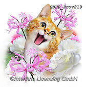 Howard, REALISTIC ANIMALS, REALISTISCHE TIERE, ANIMALES REALISTICOS, paintings+++++Selfie cat 1,GBHRPROV219,#a#, EVERYDAY ,selfies