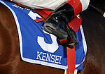 09 August 1: Kensei (no. 3), ridden by Edgar Prado and trained by Steve Asmussen, wins the 46th running of the grade 2 Jim Dandy Stakes for three year olds at Saratoga Race Track in Saratoga Springs, New York.