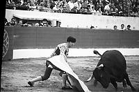 Corrida aux Arènes du Soleil d'Or (quartier des Arènes). 8 mai 1966. Scène de tauromachie. Au 1er plan Diego Puerta effectue une passe de cape avec le taureau