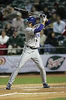 Iowa Cubs 2007