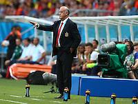 Spain coach Vicente Del Bosque gestures on the touchline