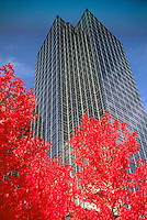 Burnaby, BC, British Columbia, Canada - Exterior of High Rise Office Building at Metrotown, Autumn, Fall