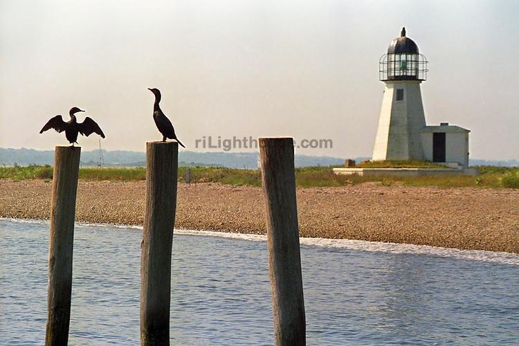 Cormorants bask in the sun near Prudence Island Lighthouse