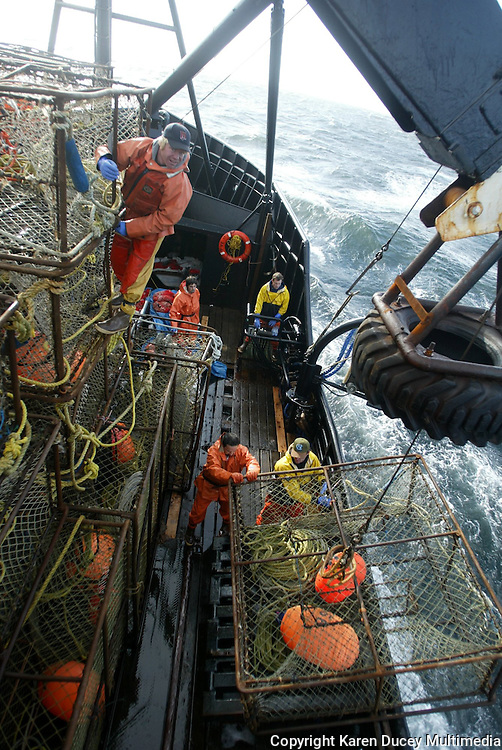 """10/20/03 crab NWS::  Crewman Jeff Madigan unties pots on the143 crab pot stack on the F/V Exito while crewmen below get a pot ready to set in Bristol Bay.  Each pot is 7' X 7' X 34"""" and weighs approximately 650 pounds.  This year's ADFG forecast of 14.7 million pounds was the largest projected harvest of Bristol Bay red king crab in 12 years.  It will be several weeks before crabbers know if that harvest was met.  The season lasted 5 days and 2 hours and was plagued with gale force winds of 35 knots or higher almost everyday."""
