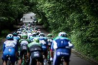 peloton   <br /> <br /> Circuit de Wallonie 2019<br /> One Day Race: Charleroi – Charleroi 192.2km (UCI 1.1.)<br /> Bingoal Cycling Cup 2019