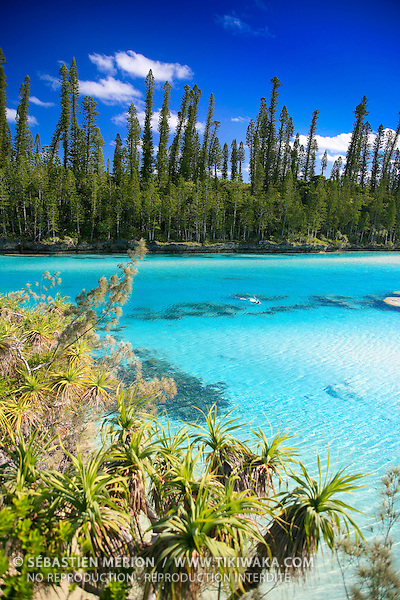 Piscine naturelle, baie d'Oro, Ile des Pins